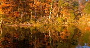 autumn reflections on Missouri lake