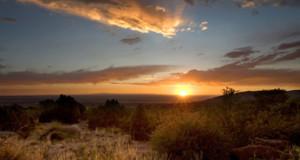 Desert Sunset in Albuquerque, New Mexico
